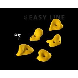 Easy L1